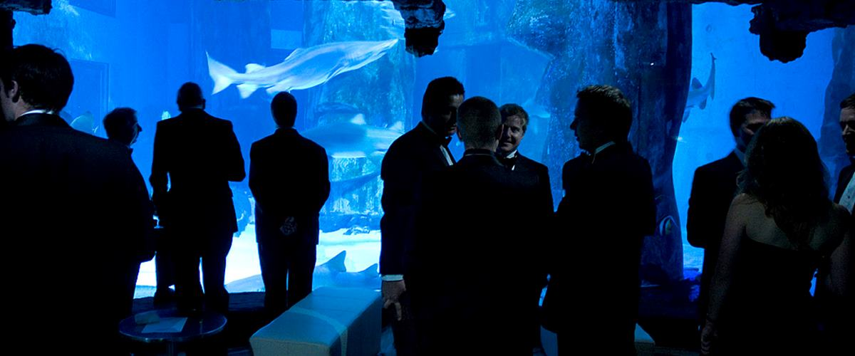 Photo of  Atlantic Cove at SEA LIFE London Aquarium