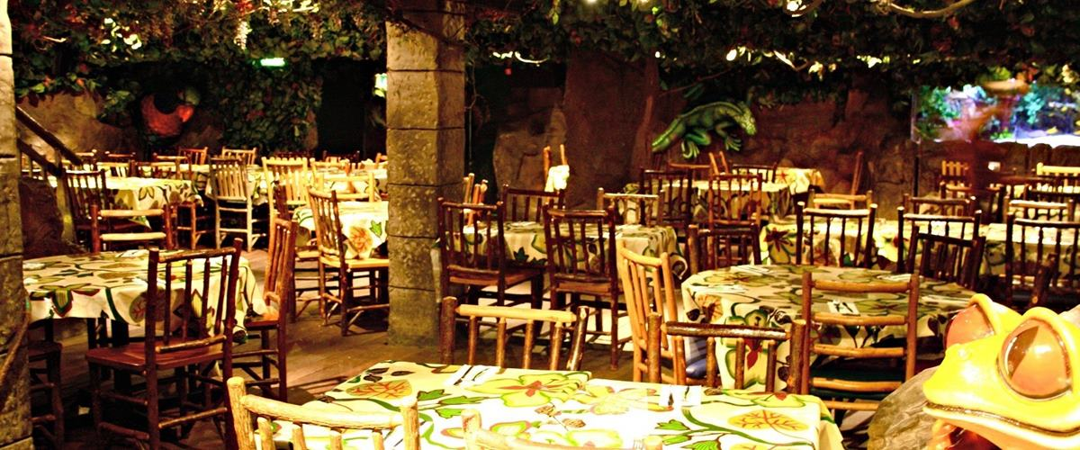 Forest Floor | Events Hire | Rainforest Cafe