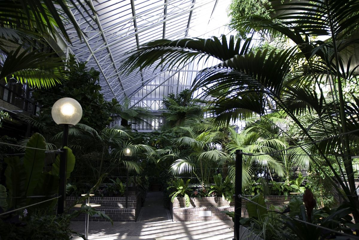 The conservatory weddings hire barbican centre for London garden rooms