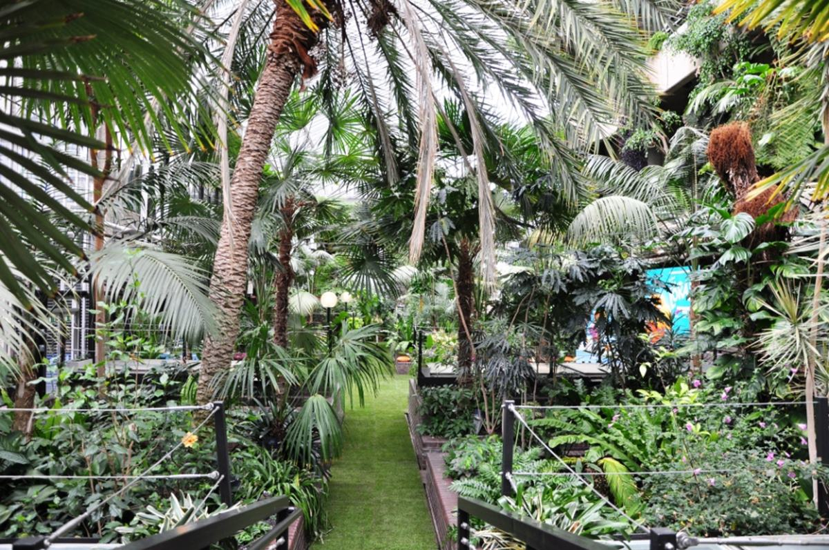 The Conservatory Weddings Hire Barbican Centre