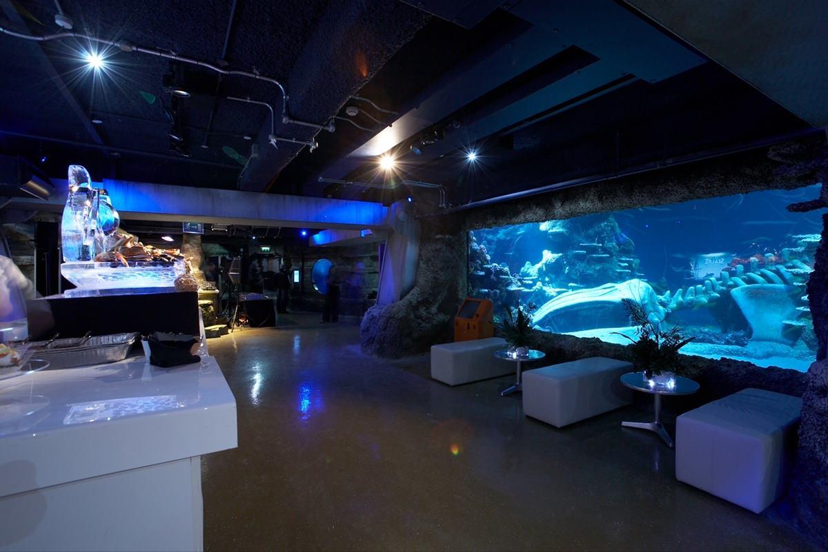 button at SEA LIFE Aquarium