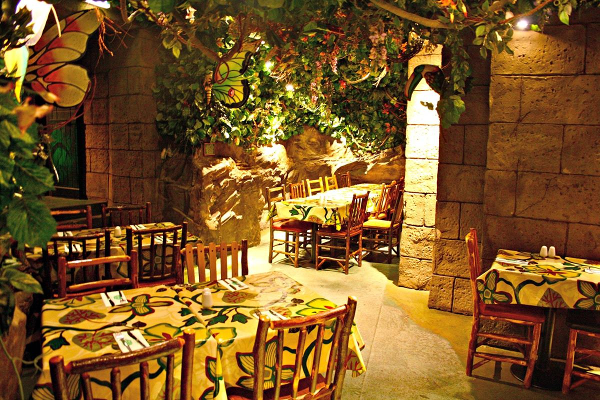 Forest floor events hire rainforest cafe for Rainforest londra