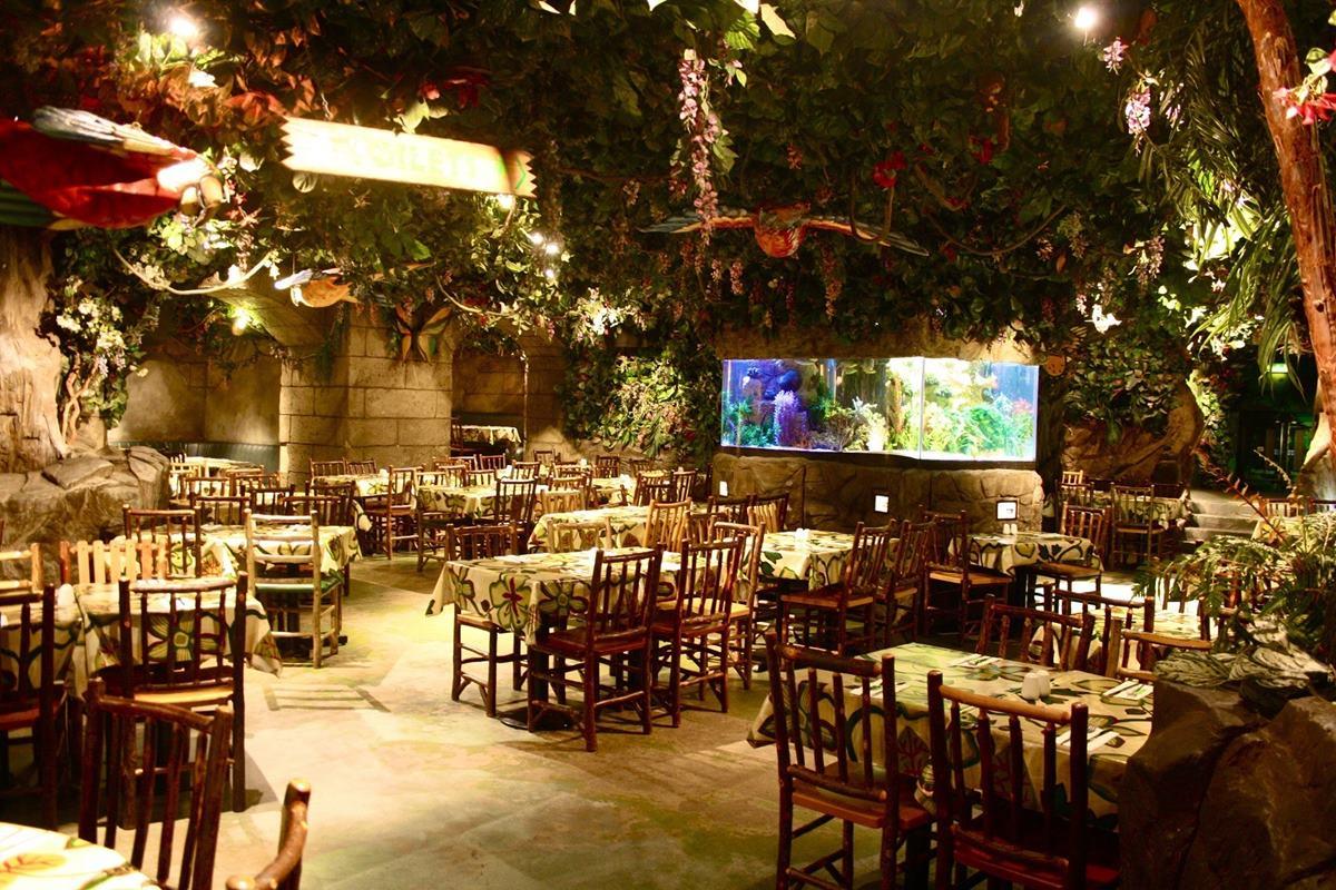 Exclusive hire events hire rainforest cafe for Rainforest londra