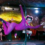 Hire Space - Venue hire Alice in Wonderland at The Ivory Vaults