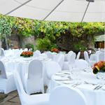 Hire Space - Venue hire Exclusive Hire at The Roof Gardens