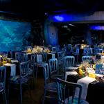 Hire Space - Venue hire  Atlantic Cove at SEA LIFE London Aquarium
